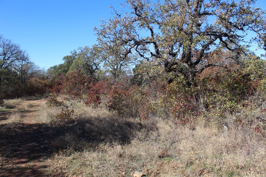 0007 Clayton Mountain Road, Gordon, Texas 76453 - acquisto real estate best allen realtor kim miller hunters creek expert