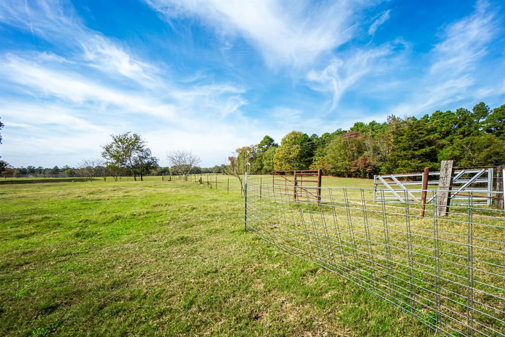 4650 Hwy-144  Daingerfield, Texas 75638 - acquisto real estate agent of the year mike shepherd