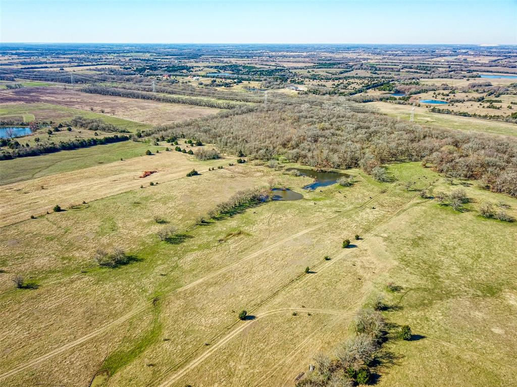 10943 County Road 670  Blue Ridge, Texas 75424 - acquisto real estate best new home sales realtor linda miller executor real estate