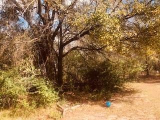 208 Windjammer Road, Gun Barrel City, Texas 75156 - acquisto real estate best allen realtor kim miller hunters creek expert