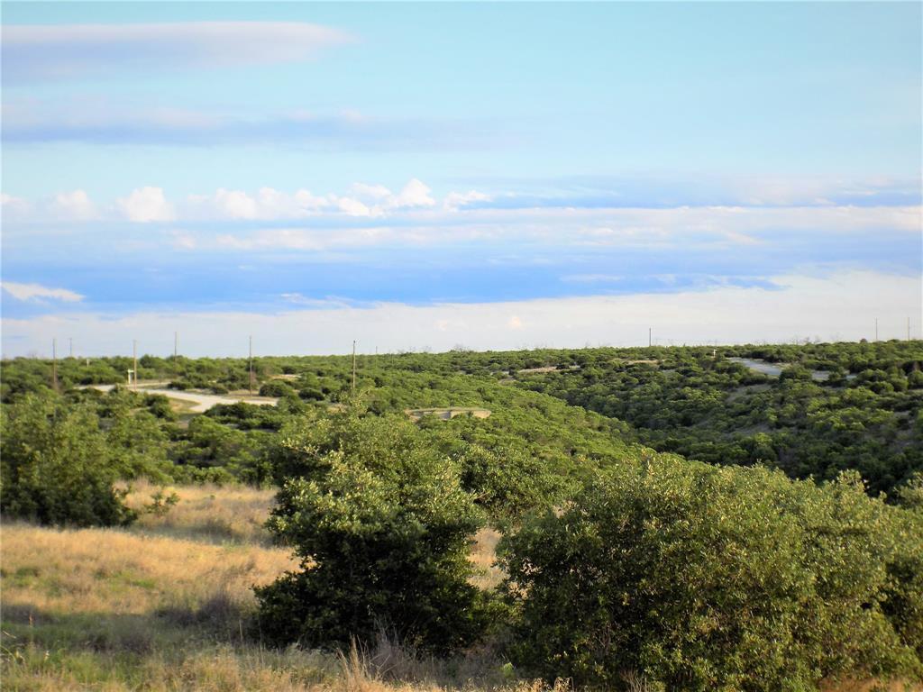 Cypress Point  Court, Possum Kingdom Lake, Texas 76449 - acquisto real estate best prosper realtor susan cancemi windfarms realtor