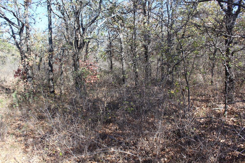 0007 Clayton Mountain Road, Gordon, Texas 76453 - acquisto real estate best prosper realtor susan cancemi windfarms realtor