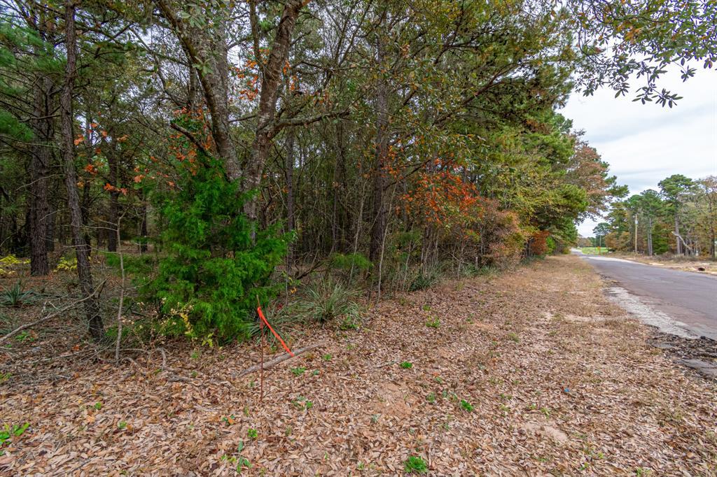16543 County Road 3147 Tyler, Texas 75706 - acquisto real estate best allen realtor kim miller hunters creek expert