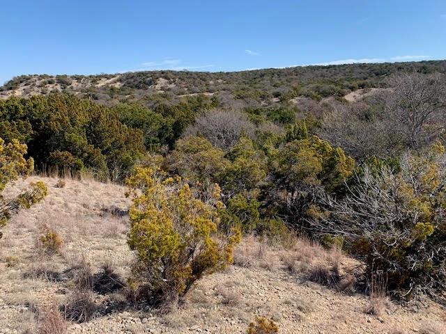 TBD County Road 654 Tuscola, Texas 79562 - acquisto real estate best listing listing agent in texas shana acquisto rich person realtor