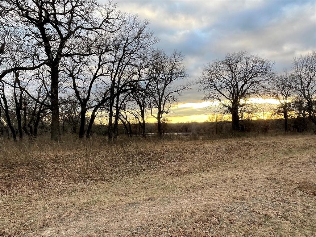 10 Ac Sunflower Paradise, Texas 76073 - acquisto real estate best new home sales realtor linda miller executor real estate