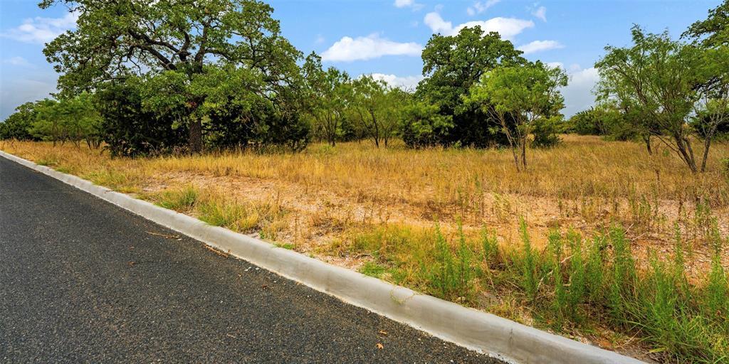 718 Windcrest  Street, Fredericksburg, Texas 78624 - acquisto real estate best designer and realtor hannah ewing kind realtor