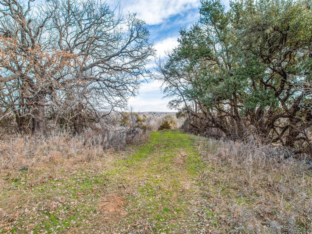 TBD School House Road, Forestburg, Texas 76239 - acquisto real estate best the colony realtor linda miller the bridges real estate