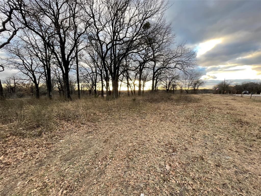 10 Ac Sunflower Paradise, Texas 76073 - acquisto real estate best photos for luxury listings amy gasperini quick sale real estate