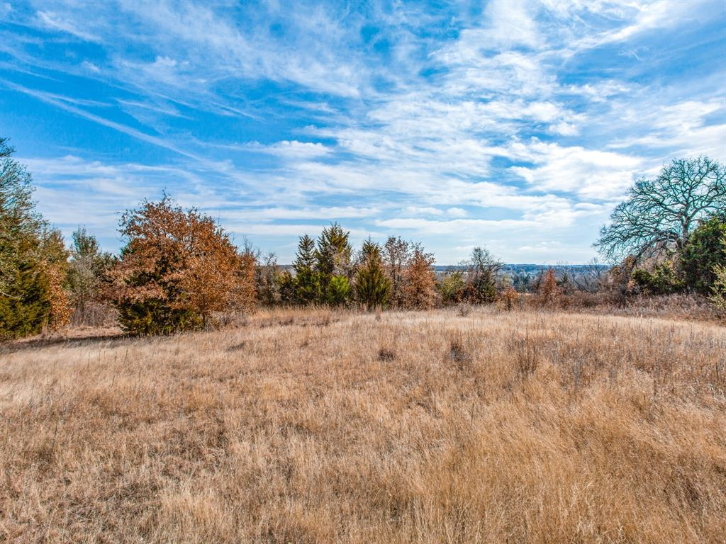 TBD School House Road, Forestburg, Texas 76239 - acquisto real estate best real estate company to work for