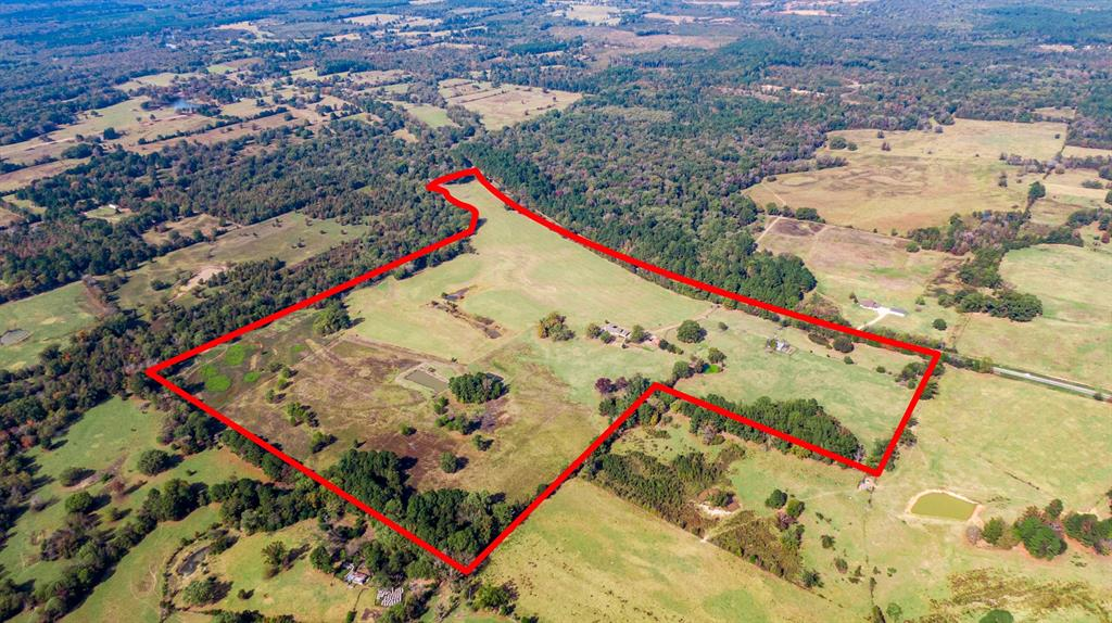 4650 Hwy 144  Daingerfield, Texas 75638 - acquisto real estate best luxury buyers agent in texas shana acquisto inheritance realtor