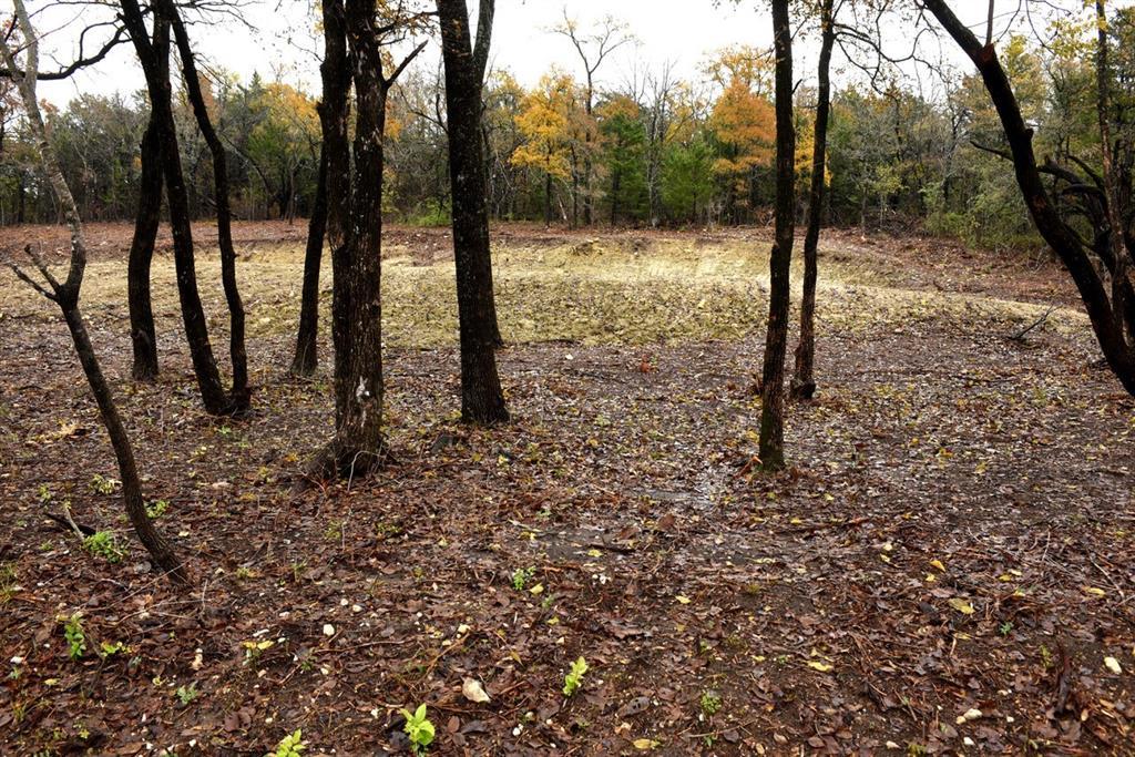 Lot 4 Pecan Gap Street, Denison, Texas 75020 - acquisto real estate best allen realtor kim miller hunters creek expert