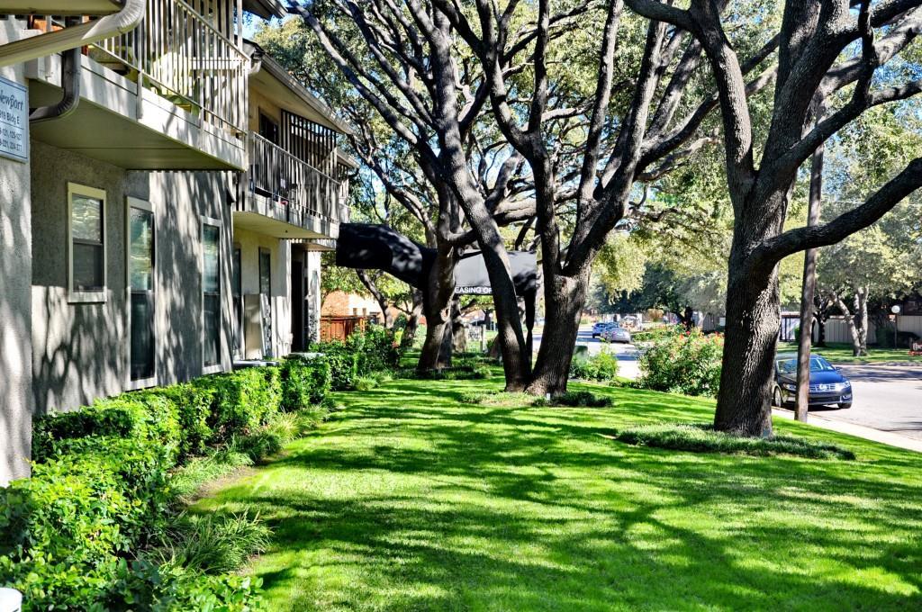 5909 Birchbrook Drive, Dallas, Texas 75206 - acquisto real estate best highland park realtor amy gasperini fast real estate service