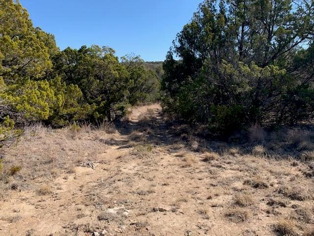 TBD County Road 654 Tuscola, Texas 79562 - acquisto real estate best allen realtor kim miller hunters creek expert
