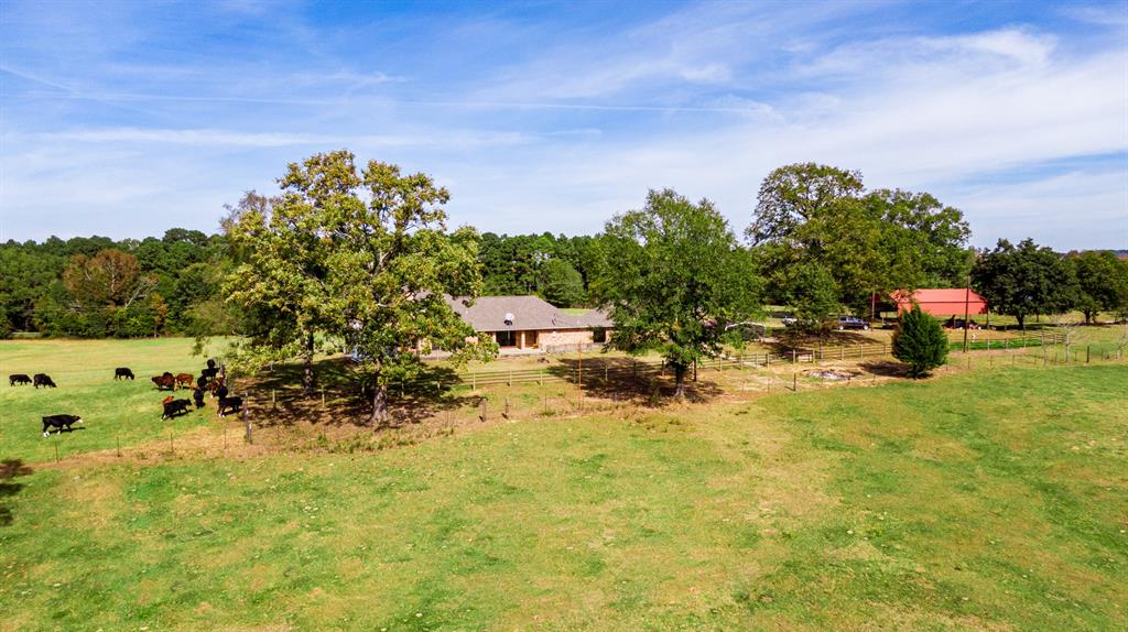 4650 Hwy-144  Daingerfield, Texas 75638 - acquisto real estate best frisco real estate agent amy gasperini panther creek realtor
