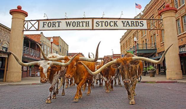 2304 MARSHVILLE Road, Fort Worth, Texas 76108 - acquisto real estate best designer and realtor hannah ewing kind realtor