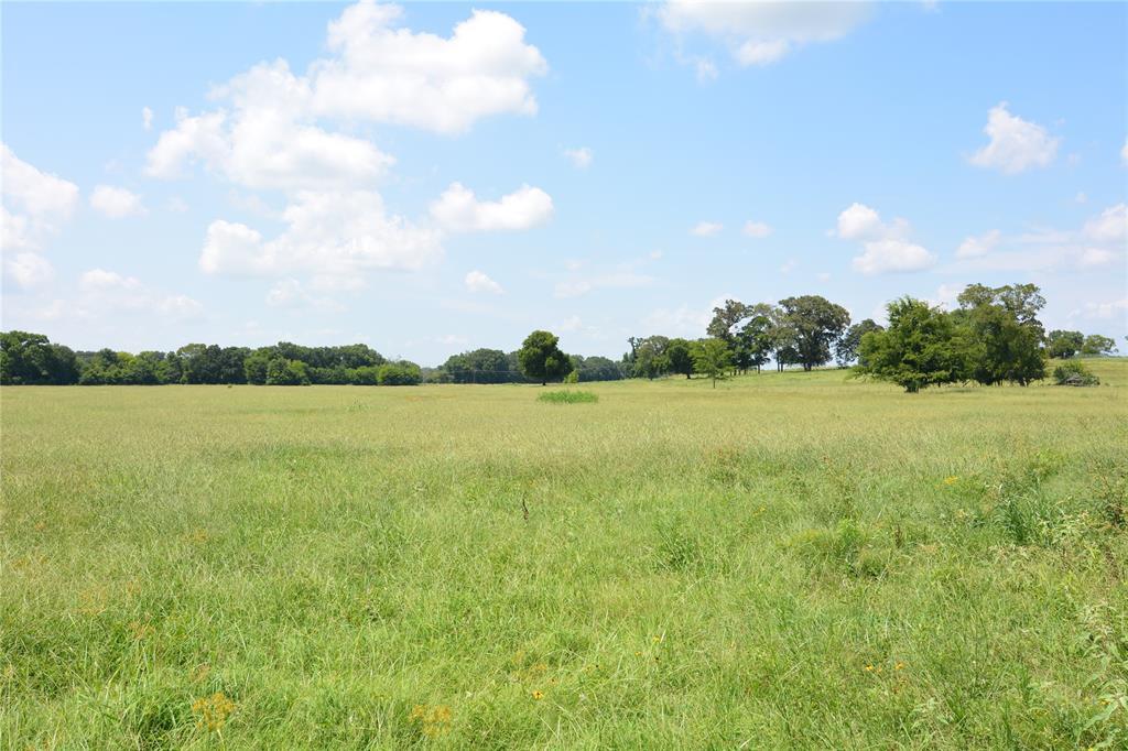 TBD6 Hwy 110 Van, Texas 75790 - acquisto real estate best allen realtor kim miller hunters creek expert