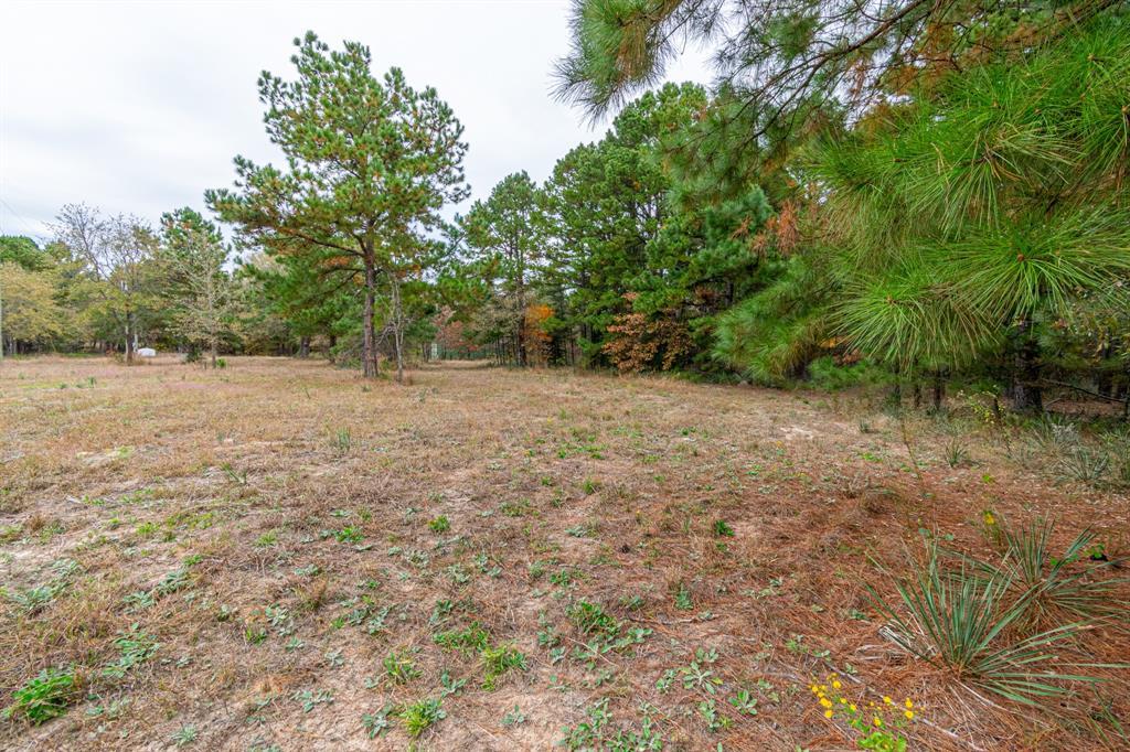 16543 County Road 3147 Tyler, Texas 75706 - acquisto real estate best prosper realtor susan cancemi windfarms realtor