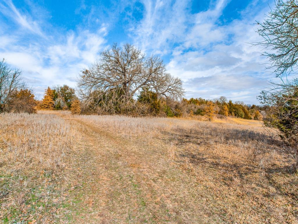 TBD School House Road, Forestburg, Texas 76239 - acquisto real estate best prosper realtor susan cancemi windfarms realtor