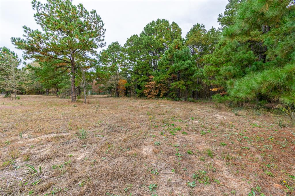 16543 County Road 3147 Tyler, Texas 75706 - acquisto real estate best the colony realtor linda miller the bridges real estate