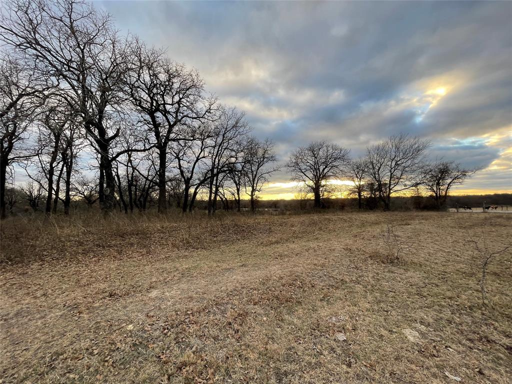 10 Ac Sunflower Paradise, Texas 76073 - acquisto real estate best highland park realtor amy gasperini fast real estate service