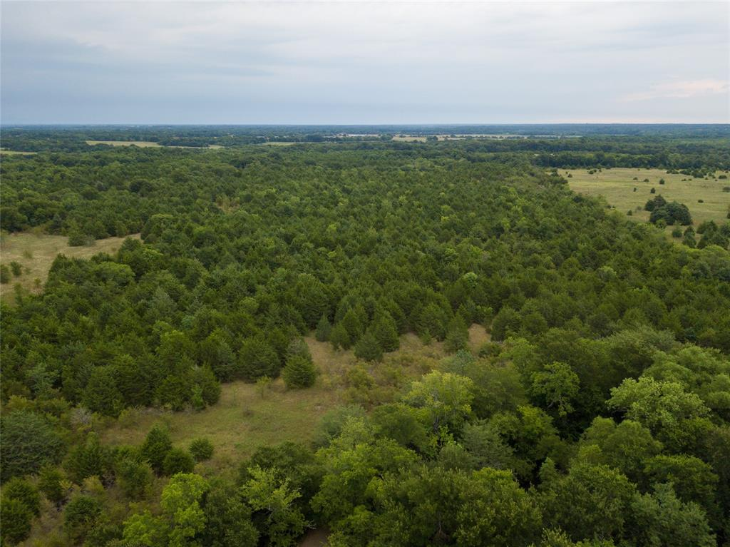 TBD CR 3370 Ladonia, Texas 75449 - acquisto real estate best allen realtor kim miller hunters creek expert