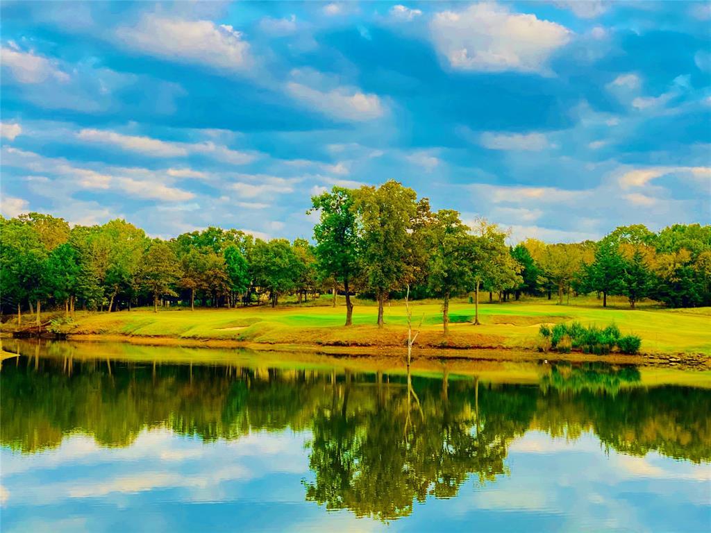 Lot 18A Oakmont  Court, Gordonville, Texas 76245 - acquisto real estate best new home sales realtor linda miller executor real estate