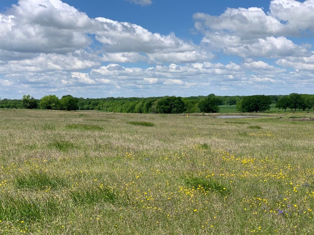 00 Makin Do  Lane, Blue Ridge, Texas 75424 - acquisto real estate best prosper realtor susan cancemi windfarms realtor
