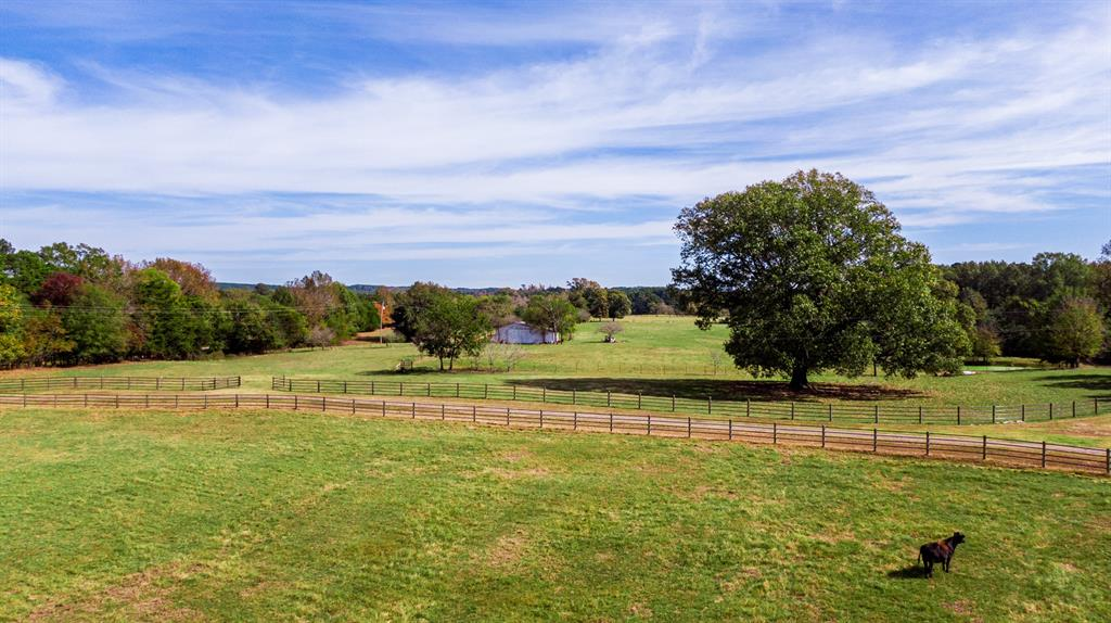4650 Hwy 144  Daingerfield, Texas 75638 - acquisto real estate best real estate company to work for