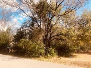 208 Windjammer Road, Gun Barrel City, Texas 75156 - Acquisto Real Estate best plano realtor mike Shepherd home owners association expert