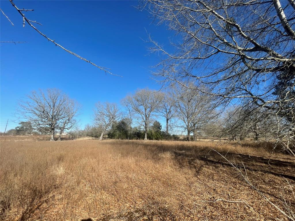 000 Hwy 154 Quitman, Texas 75783 - acquisto real estate best listing agent in the nation shana acquisto estate realtor