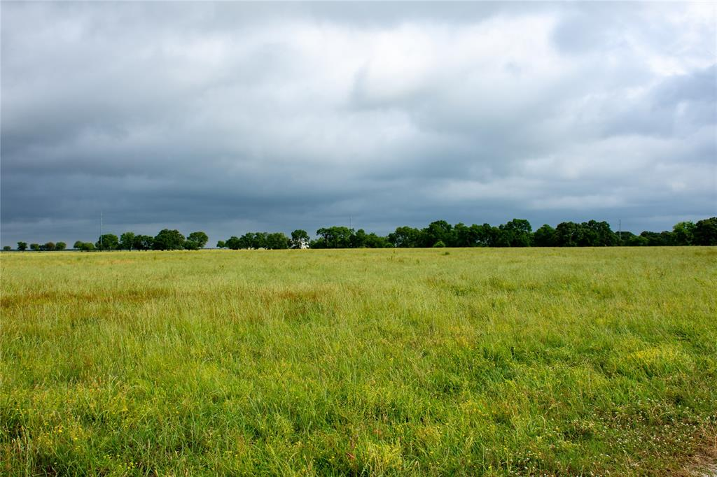 Lot 9 US Highway 69  Point, Texas 75472 - acquisto real estate best style realtor kim miller best real estate reviews dfw