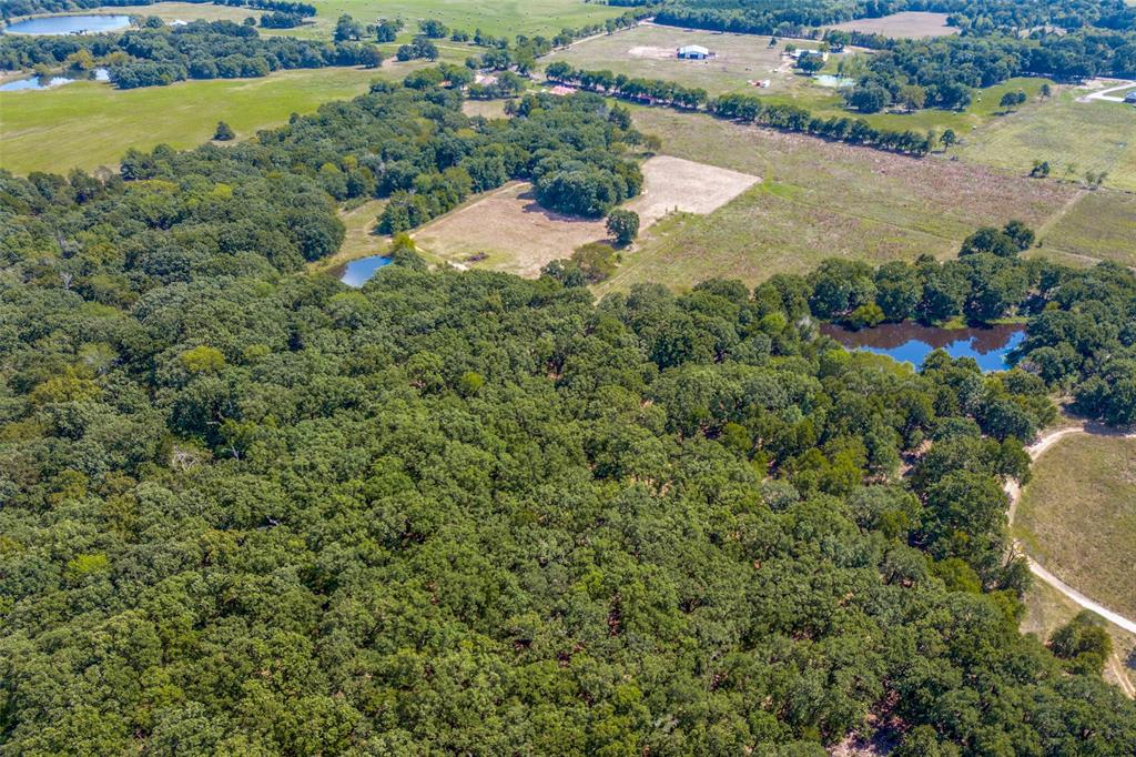 410 County Rd 2710 Honey Grove, Texas 75446 - acquisto real estate best plano real estate agent mike shepherd