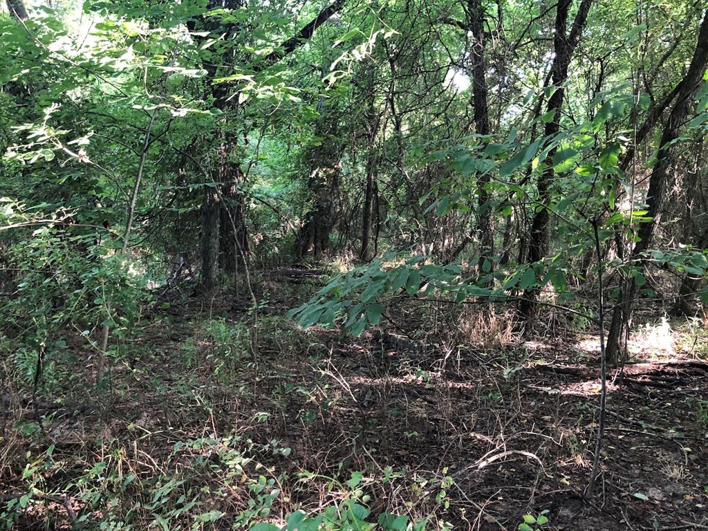 14acres County Road 3342 Sulphur Springs, Texas 75482 - acquisto real estate best allen realtor kim miller hunters creek expert