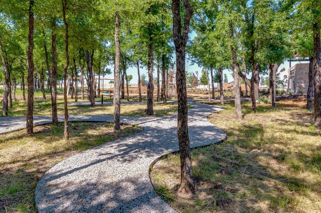 356 Moonvine  Drive, Little Elm, Texas 75068 - acquisto real estate best photos for luxury listings amy gasperini quick sale real estate