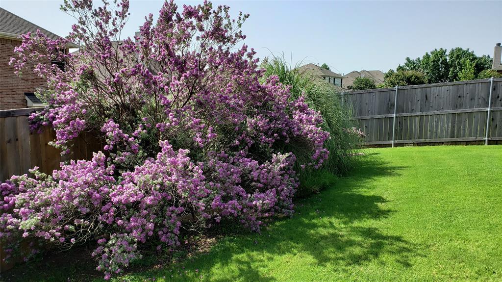 9736 Burwell  Drive, Fort Worth, Texas 76244 - acquisto real estate best negotiating realtor linda miller declutter realtor