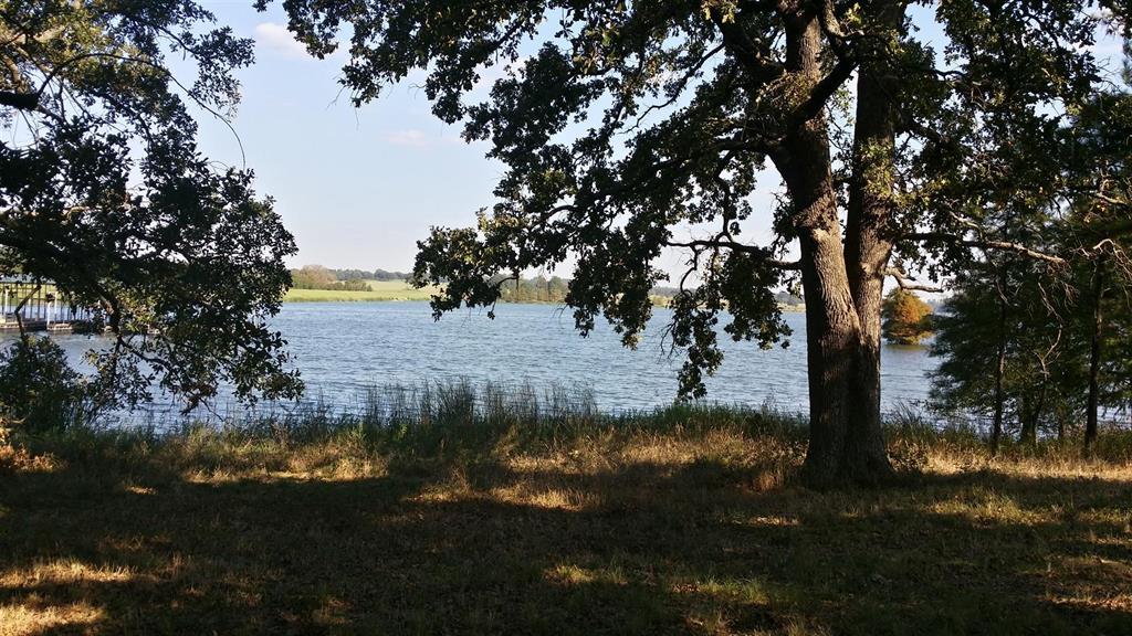 lt 221 Wildlife Way, Athens, Texas 75752 - Acquisto Real Estate best frisco realtor Amy Gasperini 1031 exchange expert