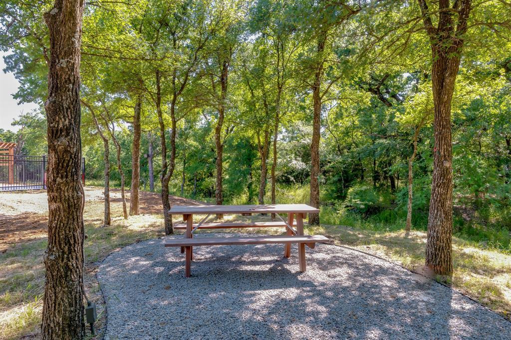 356 Moonvine  Drive, Little Elm, Texas 75068 - acquisto real estate best designer and realtor hannah ewing kind realtor