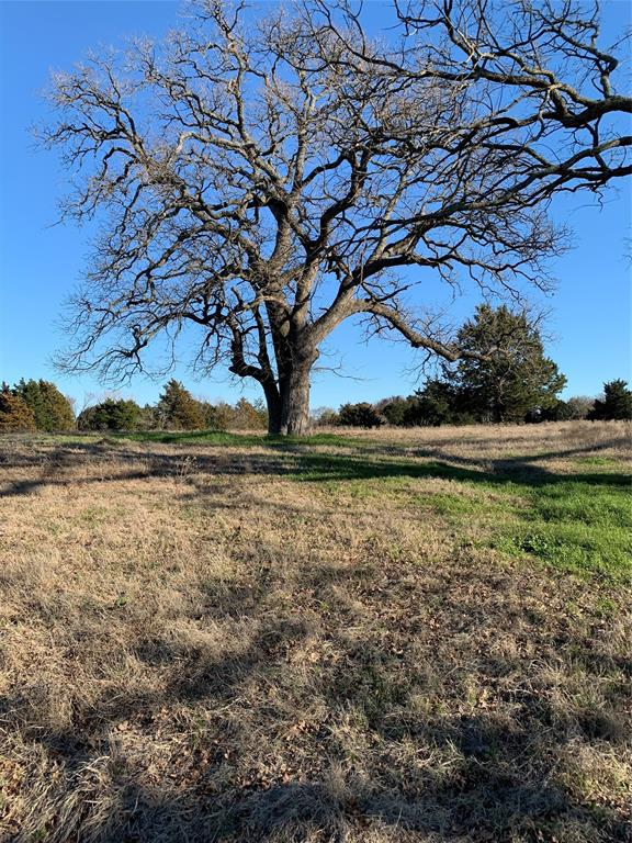Tract 7 County Road 103 Kaufman, Texas 75142 - acquisto real estate best highland park realtor amy gasperini fast real estate service