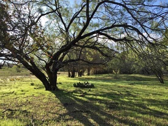 2221 CHESNEE Road, Fort Worth, Texas 76108 - acquisto real estate best realtor dfw jody daley liberty high school realtor