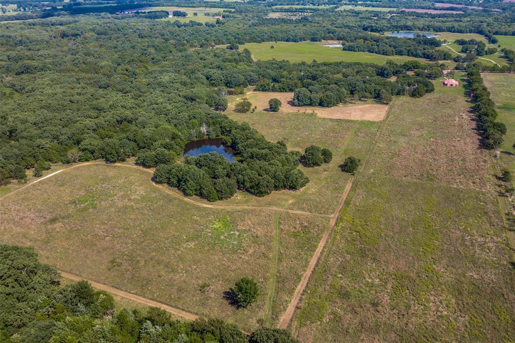 410 County Rd 2710 Honey Grove, Texas 75446 - acquisto real estate smartest realtor in america shana acquisto