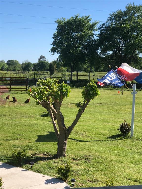 15522 Point Lavista Road, Malakoff, Texas 75148 - acquisto real estate best prosper realtor susan cancemi windfarms realtor