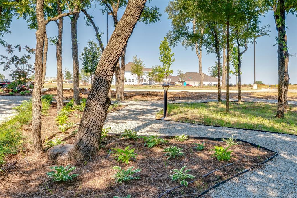 356 Moonvine  Drive, Little Elm, Texas 75068 - acquisto real estate best looking realtor in america shana acquisto