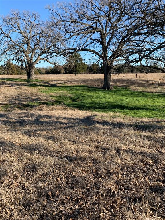 Tract 7 County Road 103 Kaufman, Texas 75142 - acquisto real estate best real estate company in frisco texas real estate showings