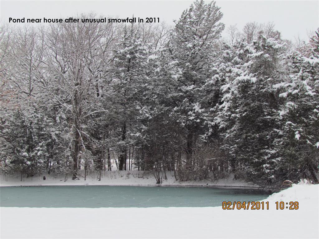 410 County Rd 2710 Honey Grove, Texas 75446 - acquisto real estate nicest realtor in america shana acquisto