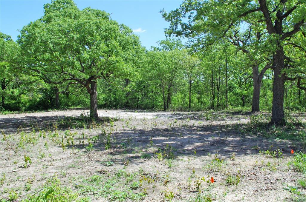 LOT 15 Timber Creek  Drive, Stephenville, Texas 76401 - Acquisto Real Estate best plano realtor mike Shepherd home owners association expert