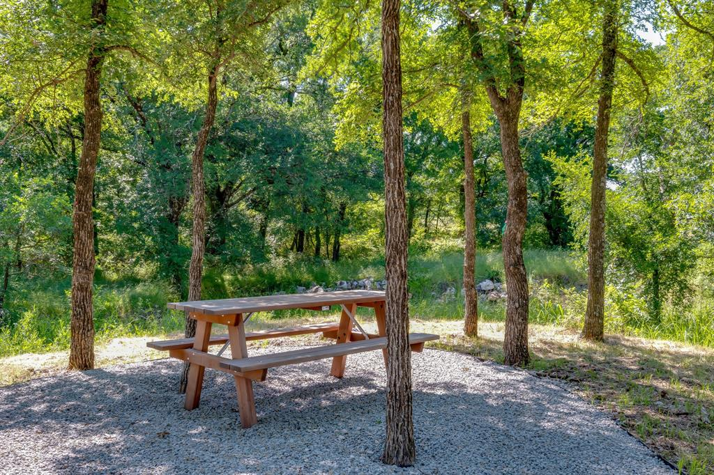 356 Moonvine  Drive, Little Elm, Texas 75068 - acquisto real estate best style realtor kim miller best real estate reviews dfw