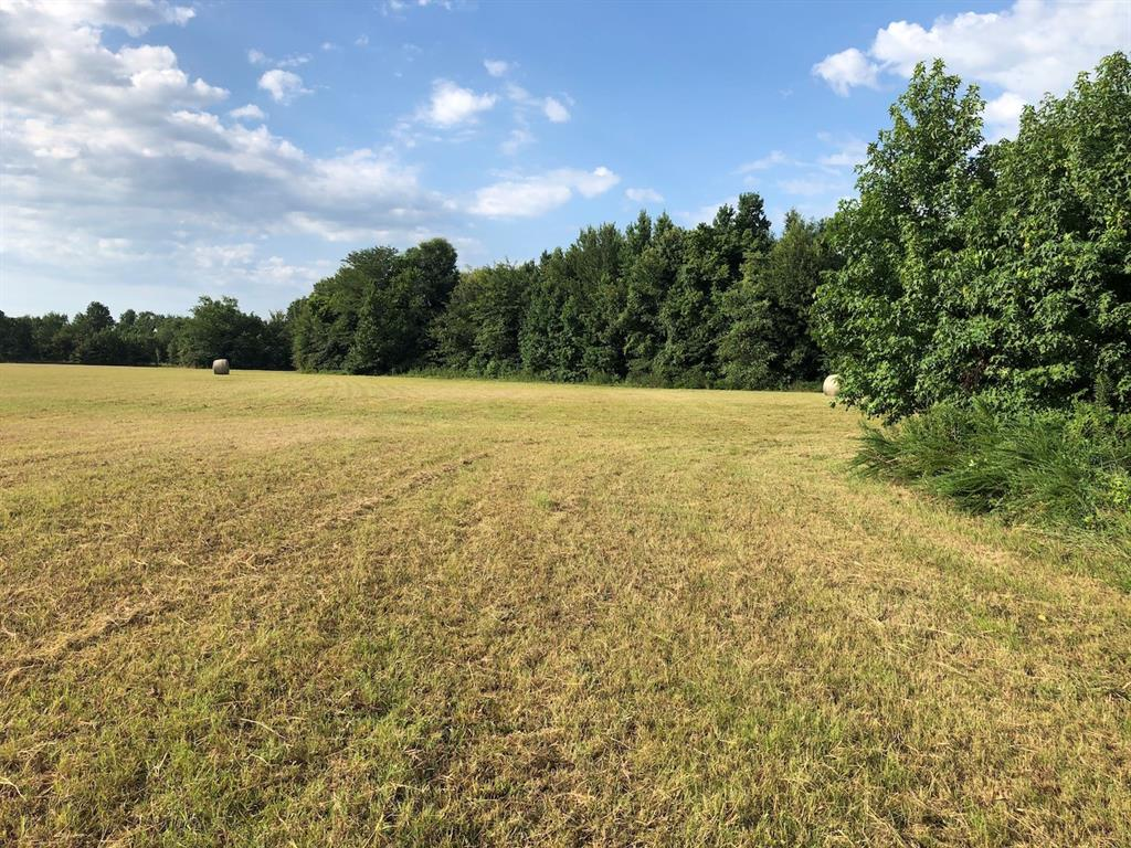 14acres County Road 3342 Sulphur Springs, Texas 75482 - Acquisto Real Estate best plano realtor mike Shepherd home owners association expert