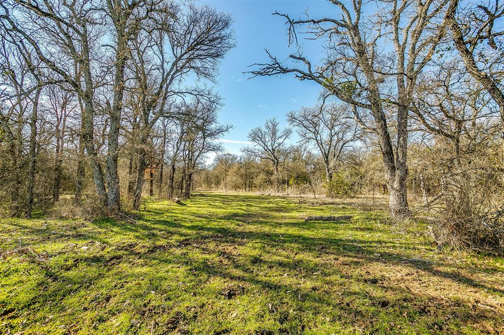 600 Wilson Bend Road, Millsap, Texas 76066 - acquisto real estaet best boutique real estate firm in texas for high net worth sellers