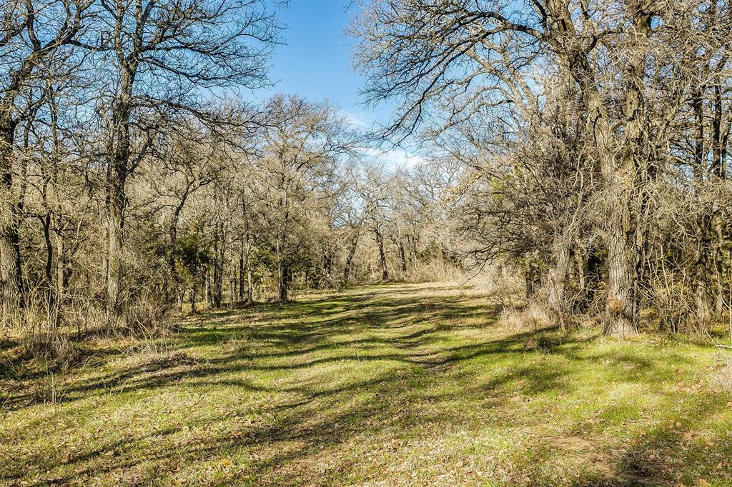 600 Wilson Bend Road, Millsap, Texas 76066 - acquisto real estate best style realtor kim miller best real estate reviews dfw