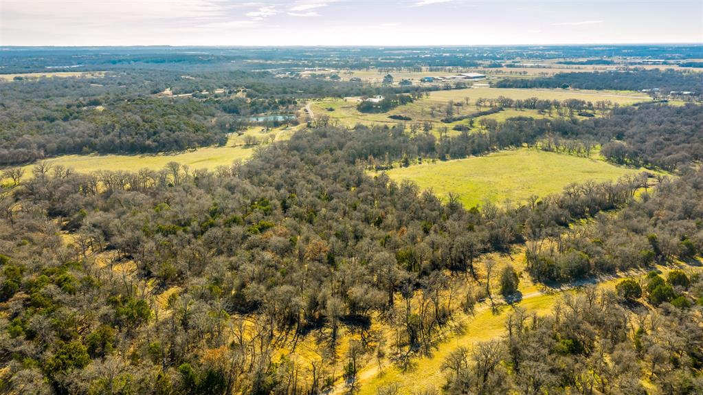 600 Wilson Bend Road, Millsap, Texas 76066 - acquisto real estate best luxury buyers agent in texas shana acquisto inheritance realtor